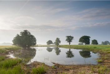 Biosphärenreservat Niedersächsische Elbtalaue