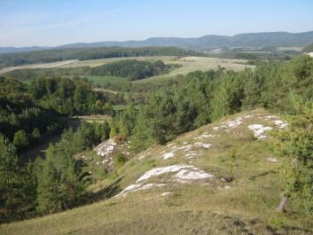 Naturpark Südharz