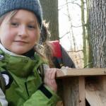 """Junior-Ranger gehen im Urwald auf """"Große Nussjagd"""""""