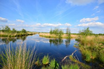 Internationaler Naturpark Bourtanger Moor – Bargerveen